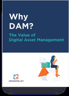 Why DAM